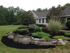 Photo of a mulched and aerated garden