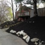 photo of mulched hill
