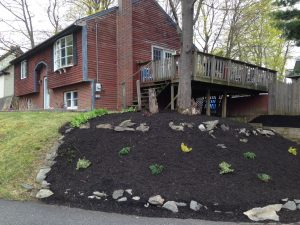 photo of a mulched hill with rocks