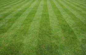 Photo of amazing mow lines