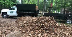 photo of fall leaves being cleaned up